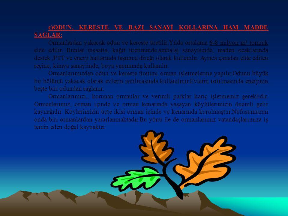 a-Ormanların genişletilmesi b-Devamlı korunması c-İşletilmesi Ormanların faydalarını ona başlık altında toplarız.