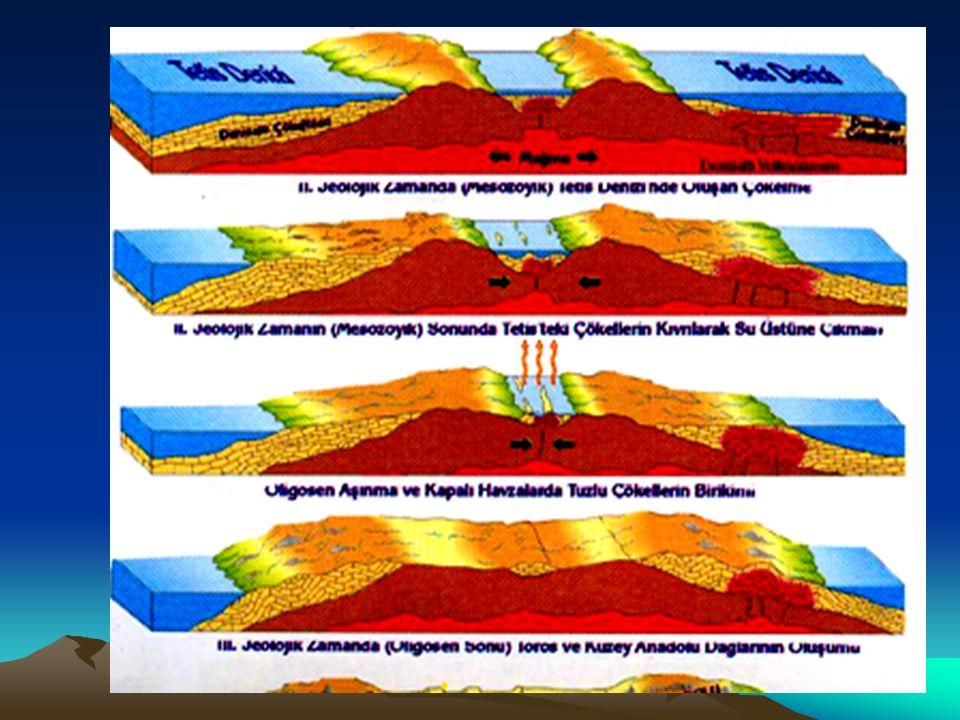 a-Kıvrım Dağları: Bu dağlar Esnek tabakaların kıvrılarak yükselmesi sonucunda oluşmuşlardır.
