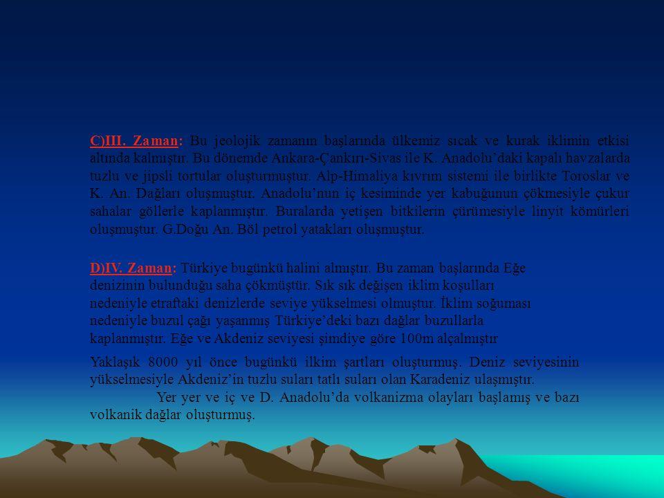 Jeolojik Zamanlara Göre Geçirdiği Evrelere : A)I.Zaman: 1.