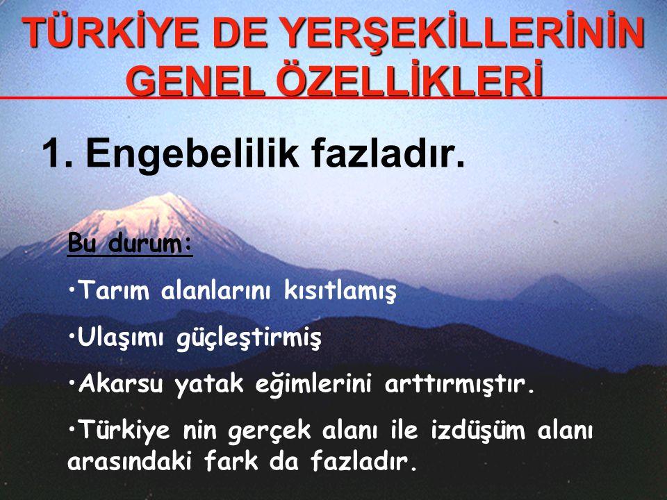 10.Dağların kıyıya paralel uzandığı Karadeniz ve Akdeniz de FALEZler yaygındır.