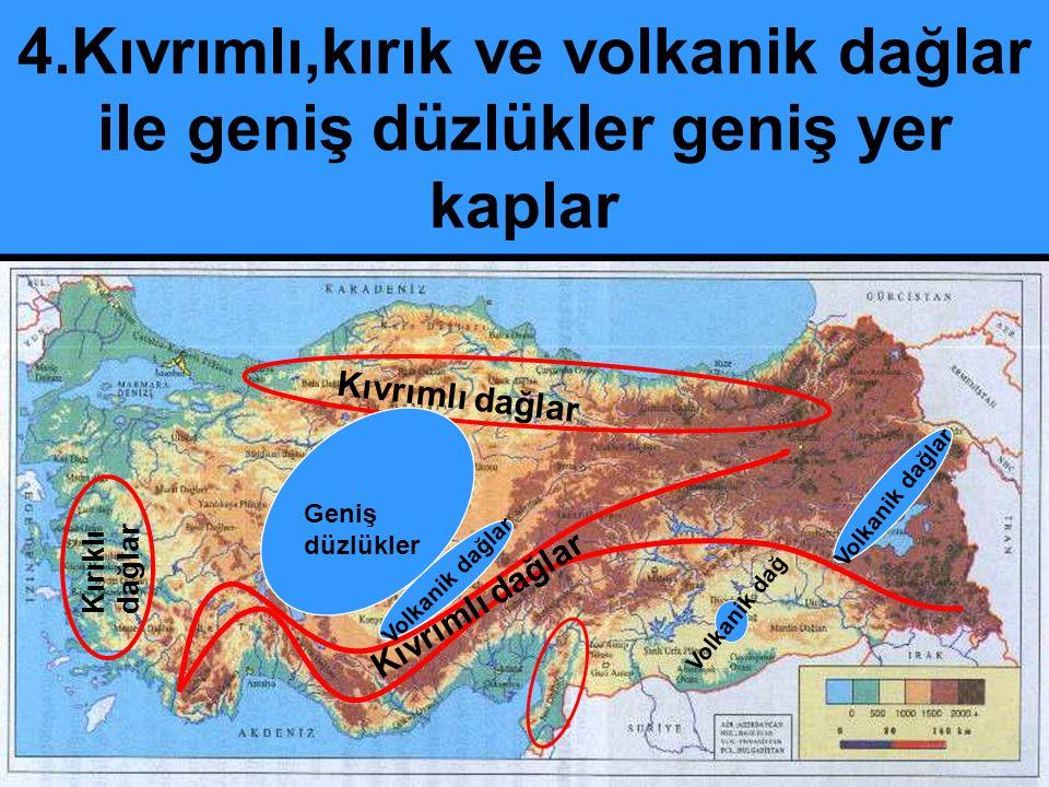 2- Killi ve Kireçli Topraklar: Genellikle İç Anadolu, İç batı An ve D.Anadolu çöküntü havzalarında kireç taşının ayrışmasıyla oluşur.