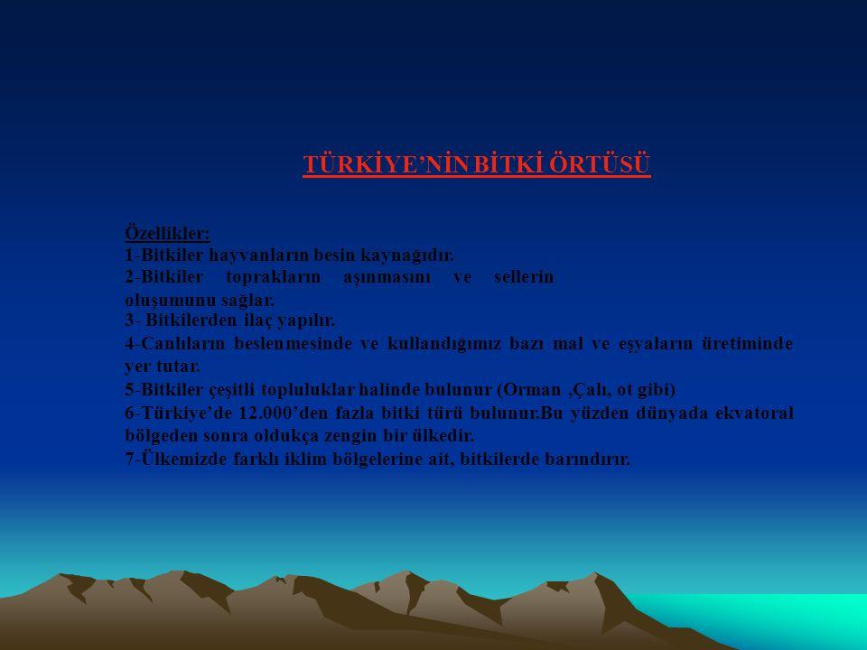 TÜRKİYE'DE İKLİM ÇEŞİTLERİ 1)Karadeniz İklimi: GÖRÜLDÜĞÜ YERLER: Karadeniz bölgesinin kıyı kesimi ile, Marmara Bölgesinin Karadeniz kıyısında görülür.