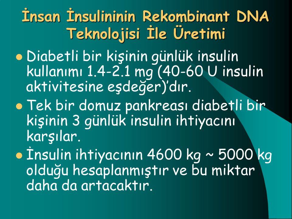 İnsan İnsulininin Rekombinant DNA Teknolojisi İle Üretimi Diabetli bir kişinin günlük insulin kullanımı 1.4-2.1 mg (40-60 U insulin aktivitesine eşdeğ