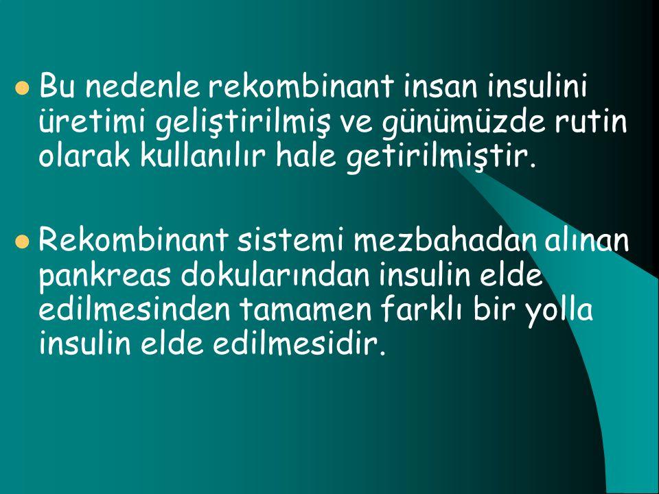 Bu nedenle rekombinant insan insulini üretimi geliştirilmiş ve günümüzde rutin olarak kullanılır hale getirilmiştir. Rekombinant sistemi mezbahadan al