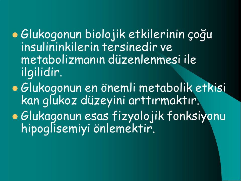 Glukogonun biolojik etkilerinin çoğu insulininkilerin tersinedir ve metabolizmanın düzenlenmesi ile ilgilidir. Glukogonun en önemli metabolik etkisi k