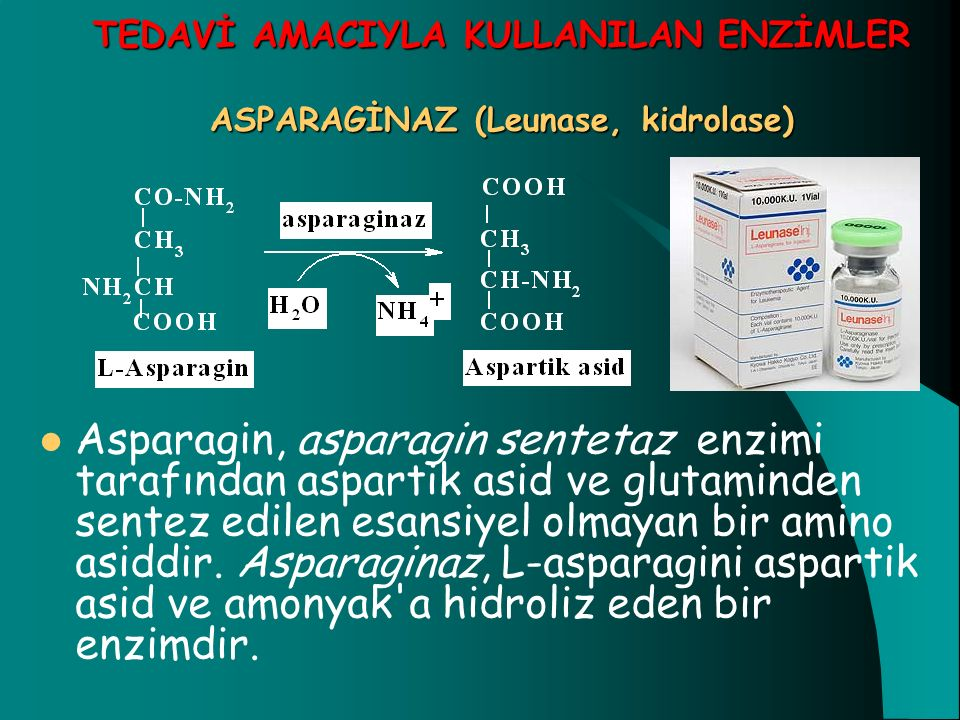 TEDAVİ AMACIYLA KULLANILAN ENZİMLER ASPARAGİNAZ (Leunase, kidrolase) Asparagin, asparagin sentetaz enzimi tarafından aspartik asid ve glutaminden sent