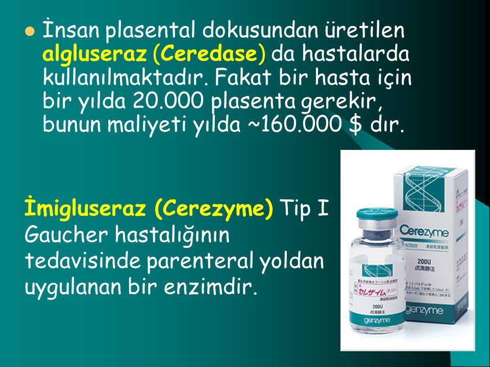 İnsan plasental dokusundan üretilen algluseraz (Ceredase) da hastalarda kullanılmaktadır. Fakat bir hasta için bir yılda 20.000 plasenta gerekir, bunu