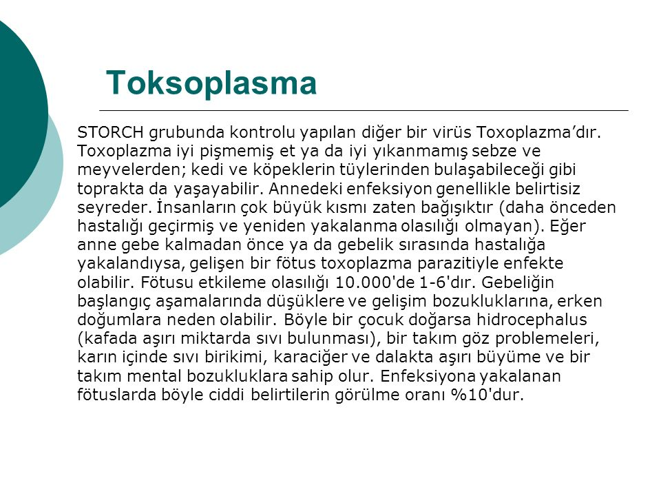 Toksoplasma STORCH grubunda kontrolu yapılan diğer bir virüs Toxoplazma'dır.