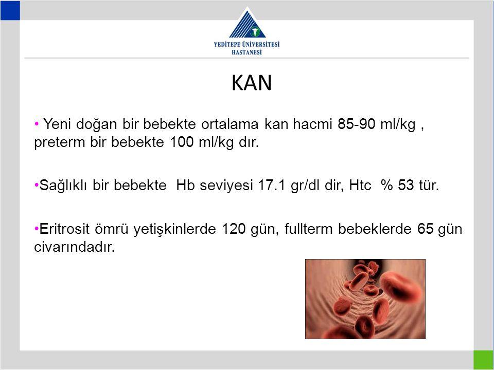 KAN Yeni doğan bir bebekte ortalama kan hacmi 85-90 ml/kg, preterm bir bebekte 100 ml/kg dır. Sağlıklı bir bebekte Hb seviyesi 17.1 gr/dl dir, Htc % 5