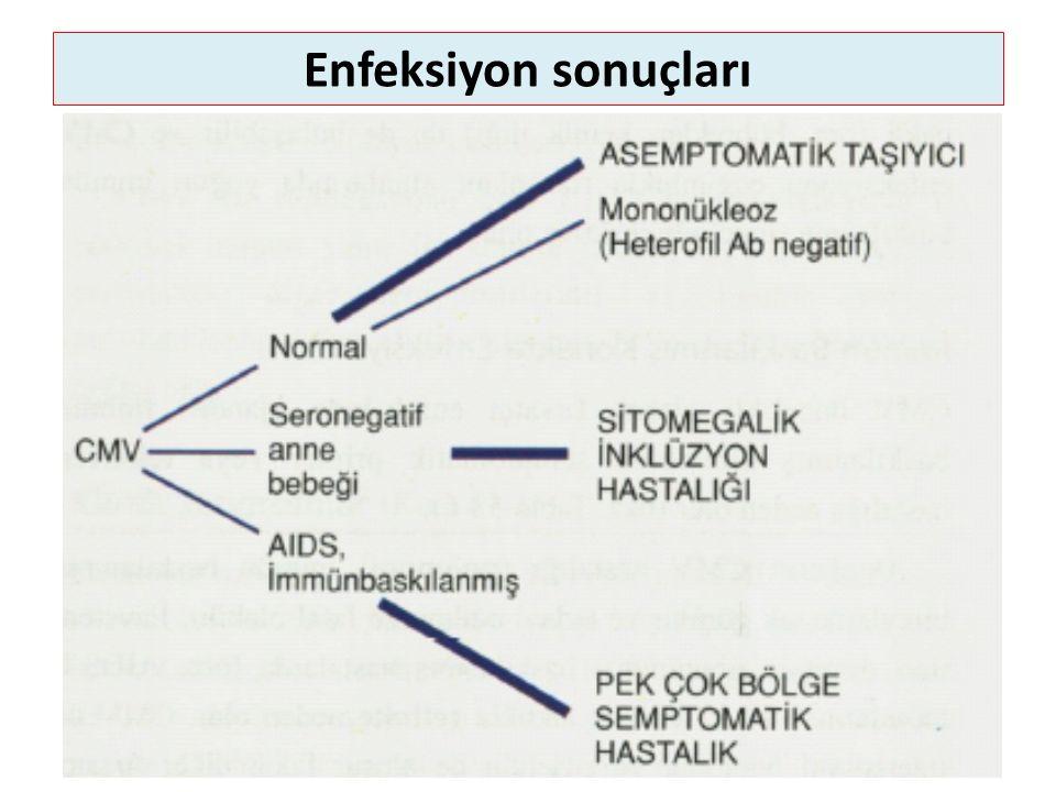 Enfeksiyon sonuçları
