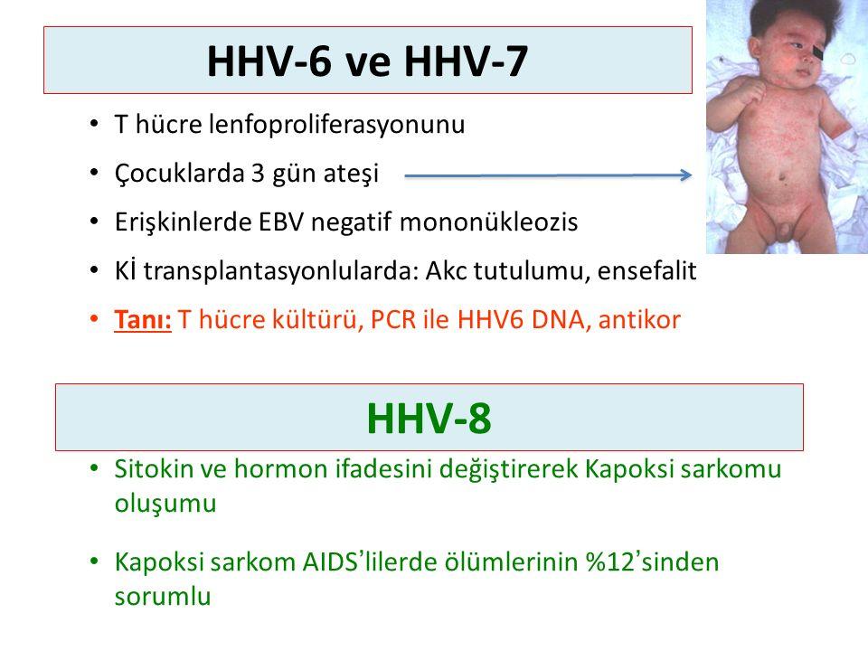 HHV-6 ve HHV-7 T hücre lenfoproliferasyonunu Çocuklarda 3 gün ateşi Erişkinlerde EBV negatif mononükleozis Kİ transplantasyonlularda: Akc tutulumu, ensefalit Tanı: T hücre kültürü, PCR ile HHV6 DNA, antikor Sitokin ve hormon ifadesini değiştirerek Kapoksi sarkomu oluşumu Kapoksi sarkom AIDS'lilerde ölümlerinin %12'sinden sorumlu HHV-8