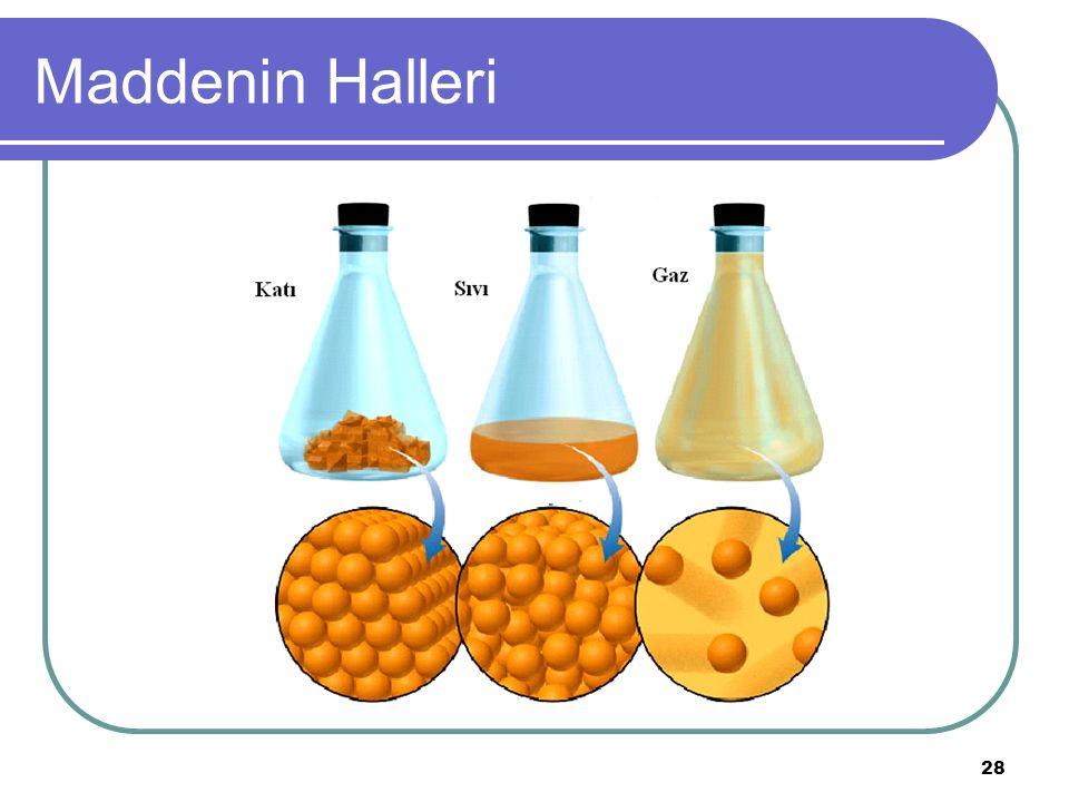 28 Maddenin Halleri