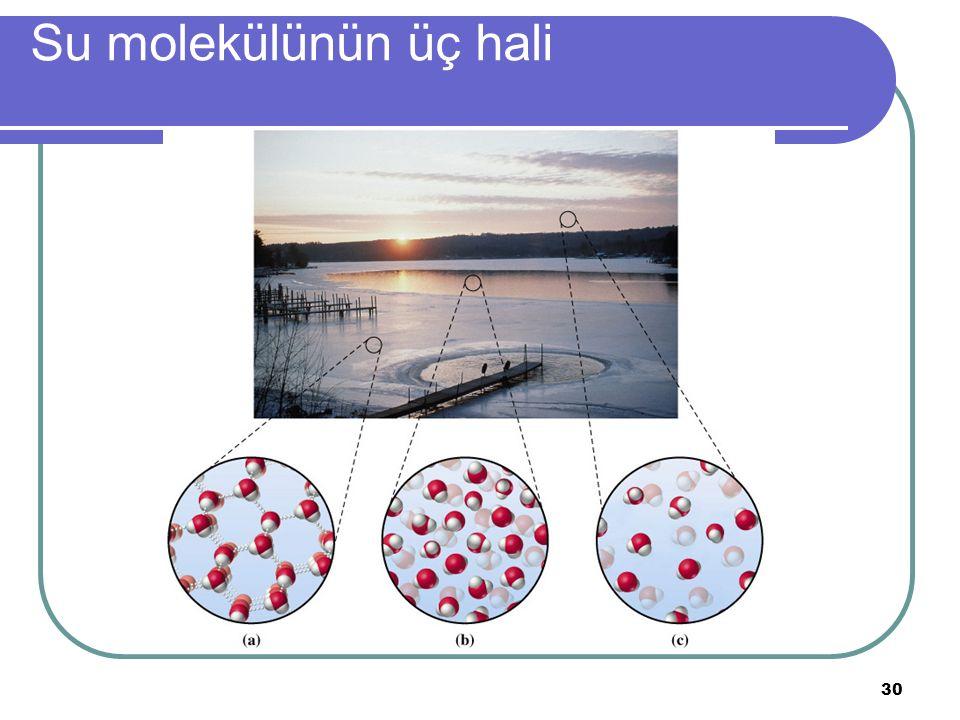 30 Su molekülünün üç hali