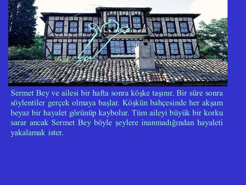 Kalabalık bir ailenin reisi olan Sermet Bey, ailesine uygun bir ev ararken çam ormanının önünde beyaz bir köşk görür.