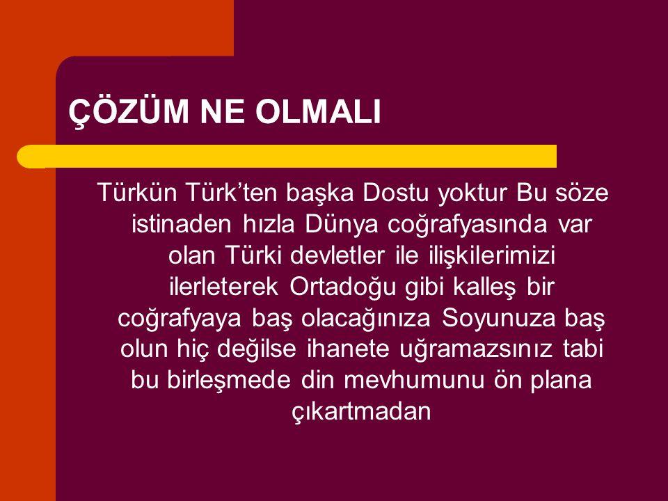 ÇÖZÜM NE OLMALI Türkün Türk'ten başka Dostu yoktur Bu söze istinaden hızla Dünya coğrafyasında var olan Türki devletler ile ilişkilerimizi ilerleterek Ortadoğu gibi kalleş bir coğrafyaya baş olacağınıza Soyunuza baş olun hiç değilse ihanete uğramazsınız tabi bu birleşmede din mevhumunu ön plana çıkartmadan