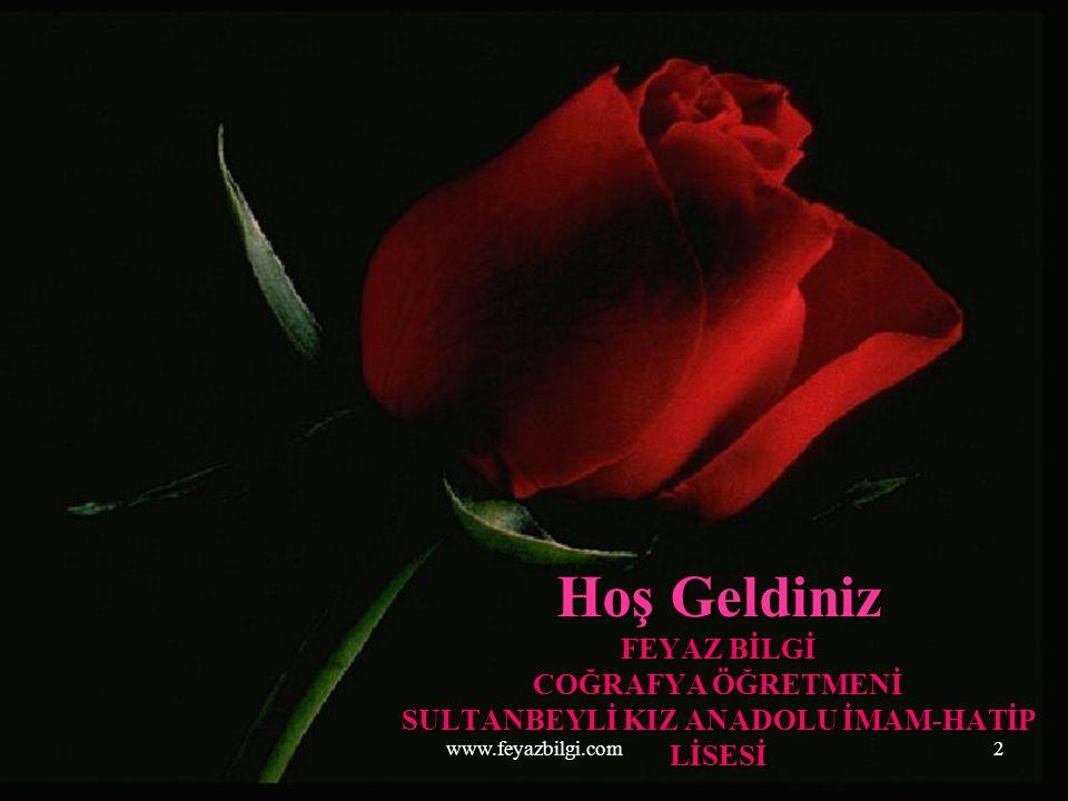 www.feyazbilgi.com1