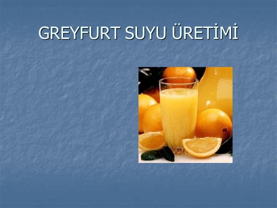 GREYFURT SUYU ÜRETİMİ