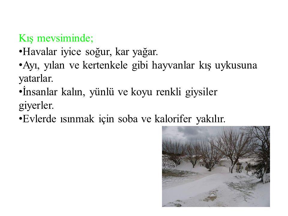 Kış mevsiminde; H avalar iyice soğur, kar yağar.