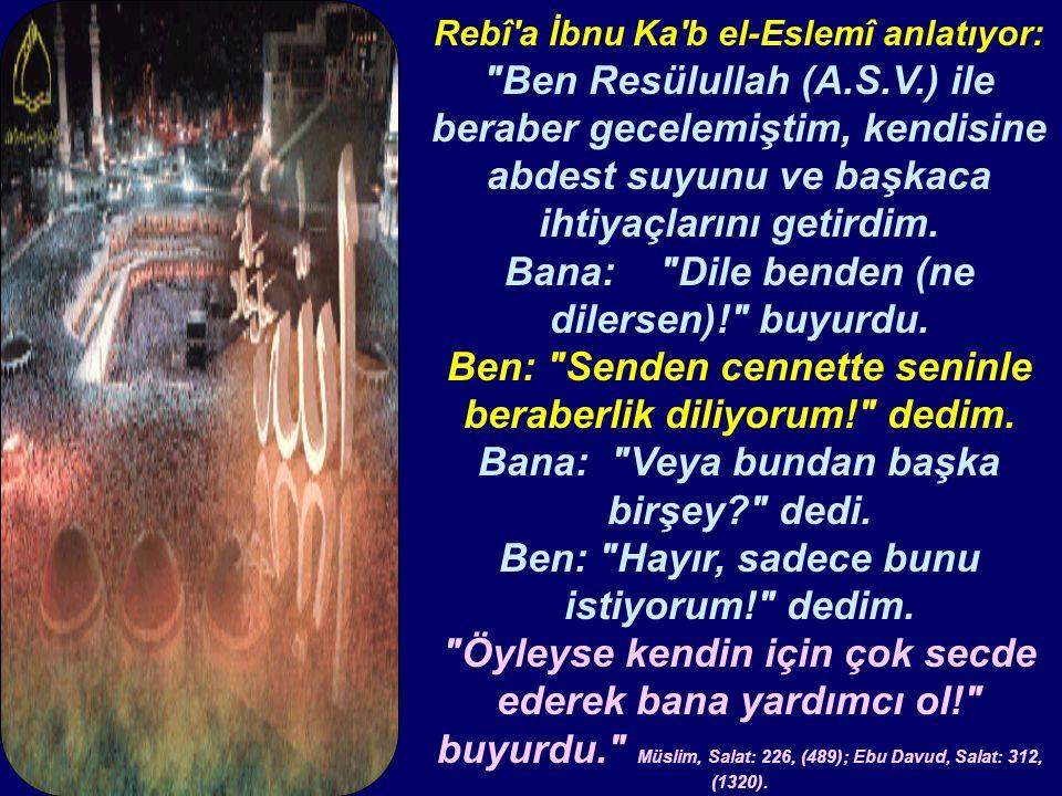 Rebî a İbnu Ka b el-Eslemî anlatıyor: Ben Resülullah (A.S.V.) ile beraber gecelemiştim, kendisine abdest suyunu ve başkaca ihtiyaçlarını getirdim.