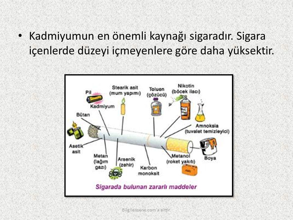 Kadmiyumun en önemli kaynağı sigaradır. Sigara içenlerde düzeyi içmeyenlere göre daha yüksektir. Bilgilensene.com'a aittir.