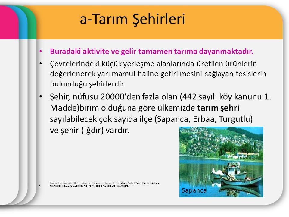 a-Tarım Şehirleri Buradaki aktivite ve gelir tamamen tarıma dayanmaktadır. Çevrelerindeki küçük yerleşme alanlarında üretilen ürünlerin değerlenerek y