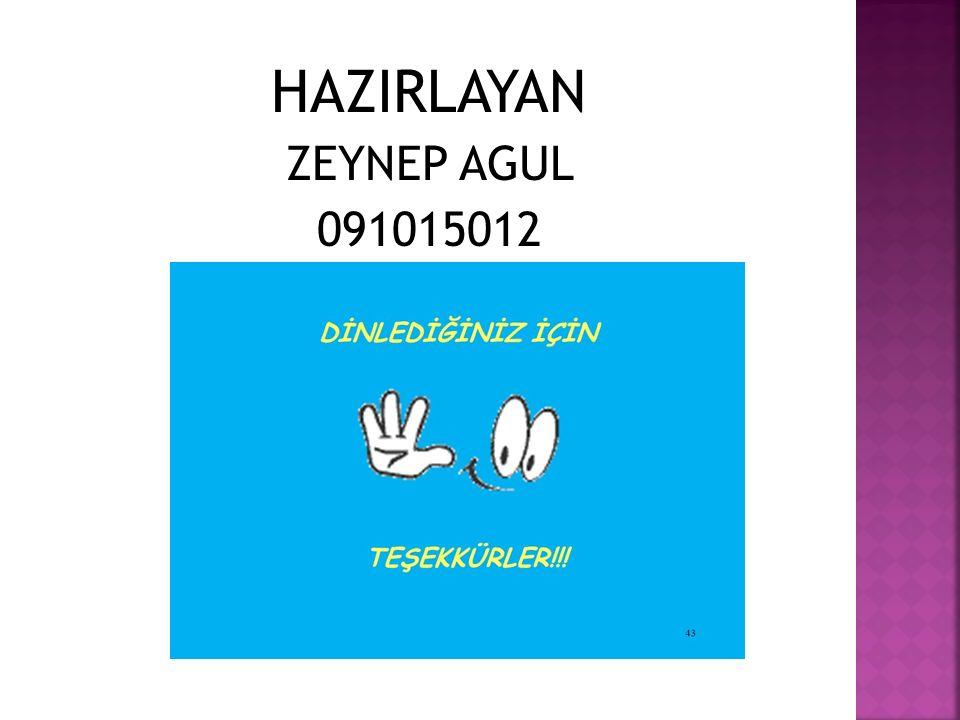 HAZIRLAYAN ZEYNEP AGUL 091015012