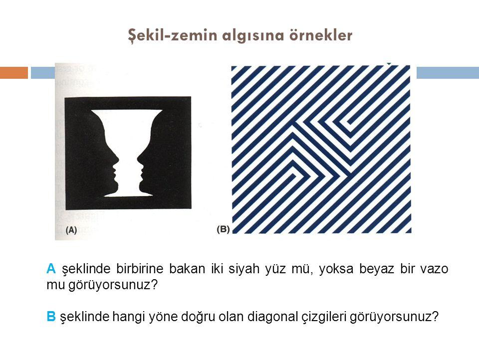 Şekil-zemin algısına örnekler A şeklinde birbirine bakan iki siyah yüz mü, yoksa beyaz bir vazo mu görüyorsunuz? B şeklinde hangi yöne doğru olan diag