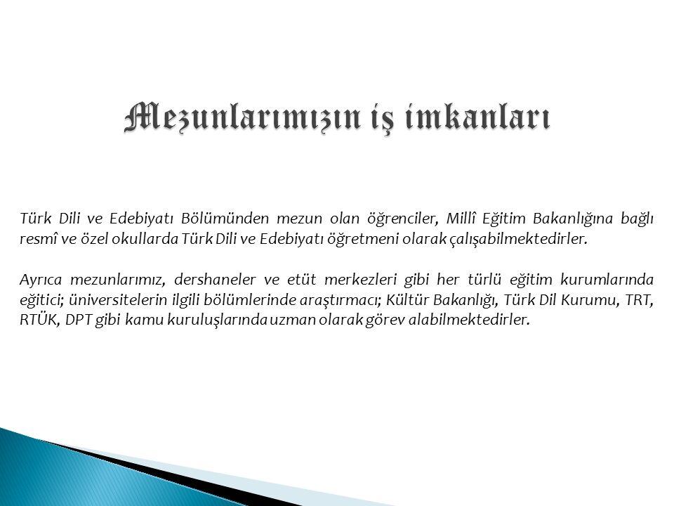 Türk Dili ve Edebiyatı Bölümünden mezun olan öğrenciler, Millî Eğitim Bakanlığına bağlı resmî ve özel okullarda Türk Dili ve Edebiyatı öğretmeni olarak çalışabilmektedirler.