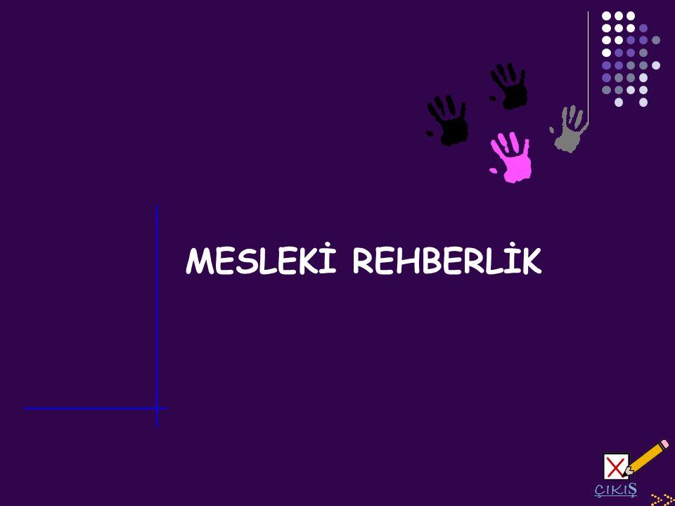 MESLEKİ REHBERLİK ÇIKI Ş