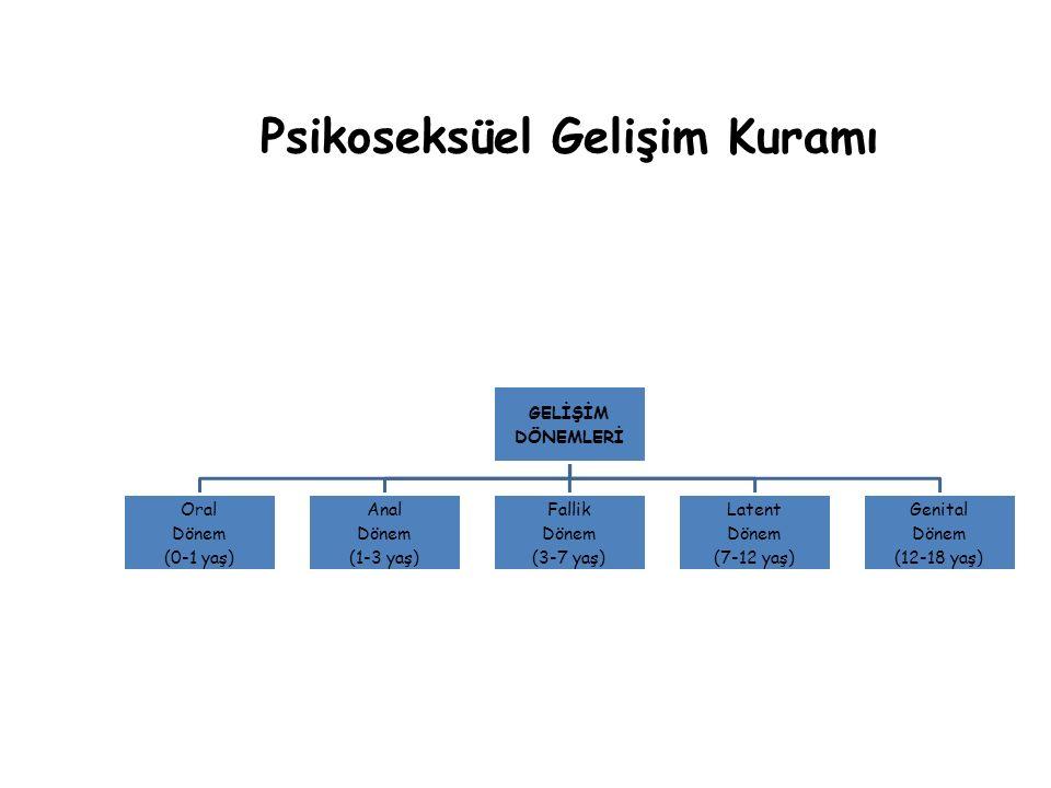 Psikoseksüel Gelişim Kuramı GELİŞİM DÖNEMLERİ Oral Dönem (0-1 yaş) Anal Dönem (1-3 yaş) Fallik Dönem (3-7 yaş) Latent Dönem (7-12 yaş) Genital Dönem (12-18 yaş)