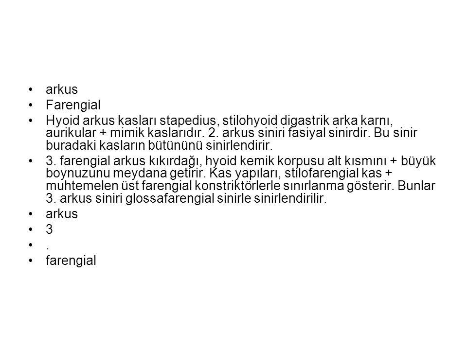 arkus Farengial Hyoid arkus kasları stapedius, stilohyoid digastrik arka karnı, aurikular + mimik kaslarıdır. 2. arkus siniri fasiyal sinirdir. Bu sin
