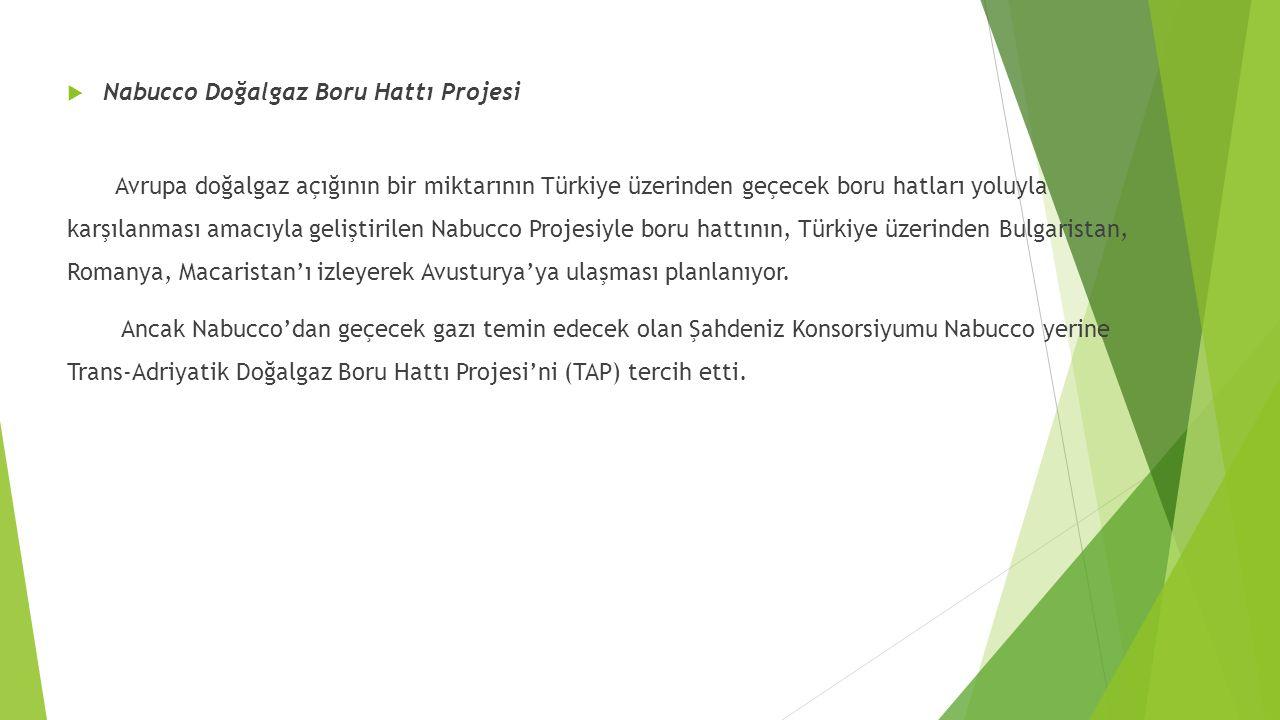  Nabucco Doğalgaz Boru Hattı Projesi Avrupa doğalgaz açığının bir miktarının Türkiye üzerinden geçecek boru hatları yoluyla karşılanması amacıyla geliştirilen Nabucco Projesiyle boru hattının, Türkiye üzerinden Bulgaristan, Romanya, Macaristan'ı izleyerek Avusturya'ya ulaşması planlanıyor.