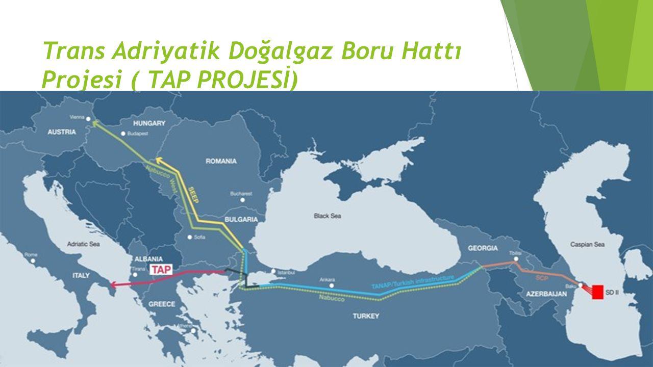 Trans Adriyatik Doğalgaz Boru Hattı Projesi ( TAP PROJESİ)