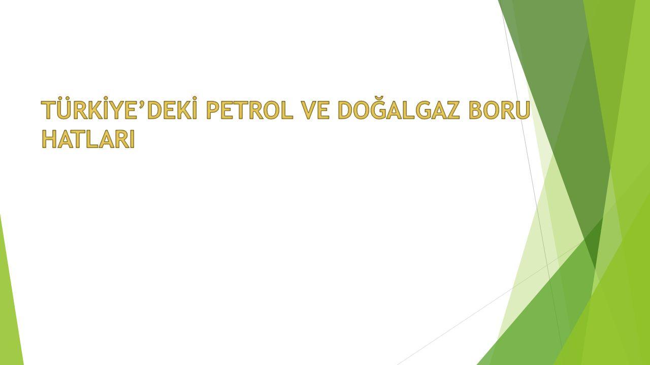DOĞALGAZ BORU HATLARI  Rusya – Türkiye Doğalgaz Boru Hattı (Batı Hattı) Türkiye'ye Bulgaristan sınırında Malkoçlar'dan giren, Hamitabat, Ambarlı, İstanbul, İzmit, Bursa, Eskişehir güzergâhını takip ederek Ankara'ya ulaşan hat 845 km uzunluğundadır.