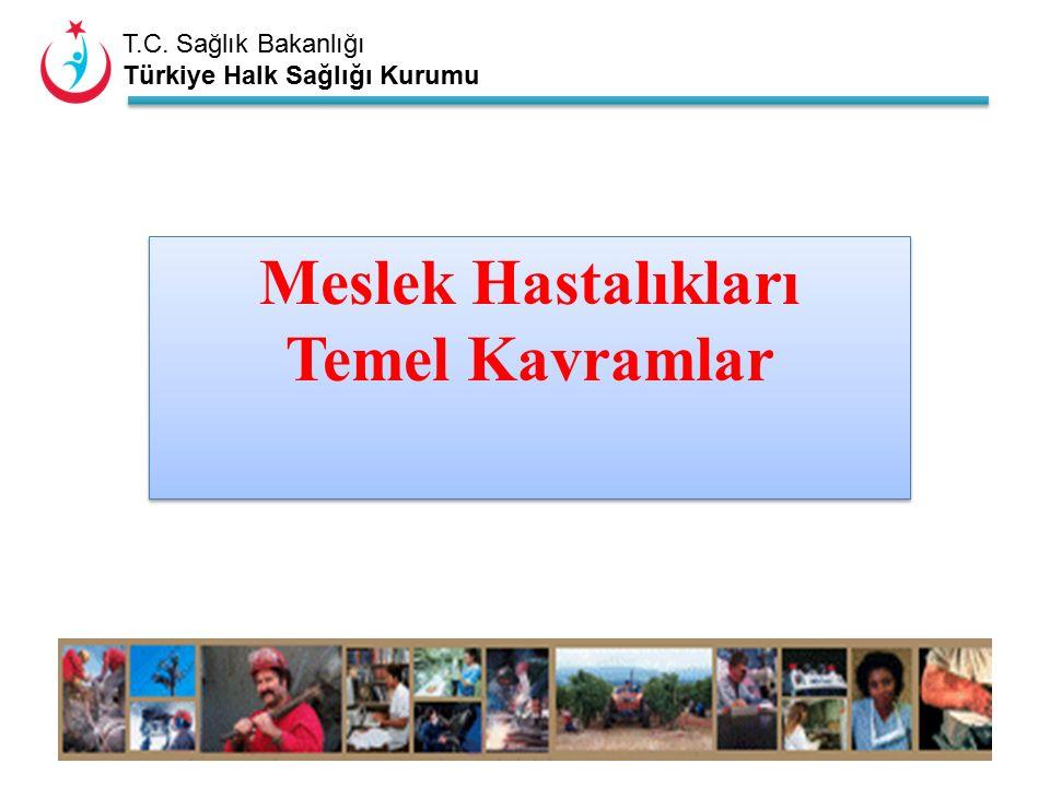 T.C. Sağlık Bakanlığı Türkiye Halk Sağlığı Kurumu Meslek Hastalıkları Temel Kavramlar