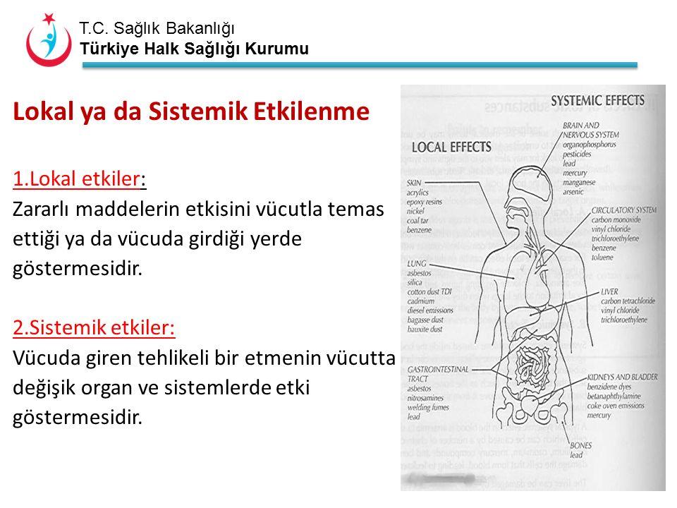 T.C. Sağlık Bakanlığı Türkiye Halk Sağlığı Kurumu Lokal ya da Sistemik Etkilenme 1.Lokal etkiler: Zararlı maddelerin etkisini vücutla temas ettiği ya