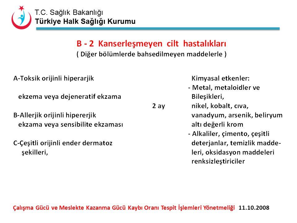 T.C. Sağlık Bakanlığı Türkiye Halk Sağlığı Kurumu Çalışma Gücü ve Meslekte Kazanma Gücü Kaybı Oranı Tespit İşlemleri Yönetmeliği 11.10.2008