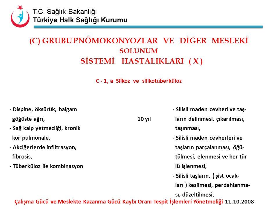 T.C. Sağlık Bakanlığı Türkiye Halk Sağlığı Kurumu (C) GRUBU PNÖMOKONYOZLAR VE DİĞER MESLEKİ SOLUNUM SİSTEMİ HASTALIKLARI ( X ) C - 1, a Slikoz ve sili