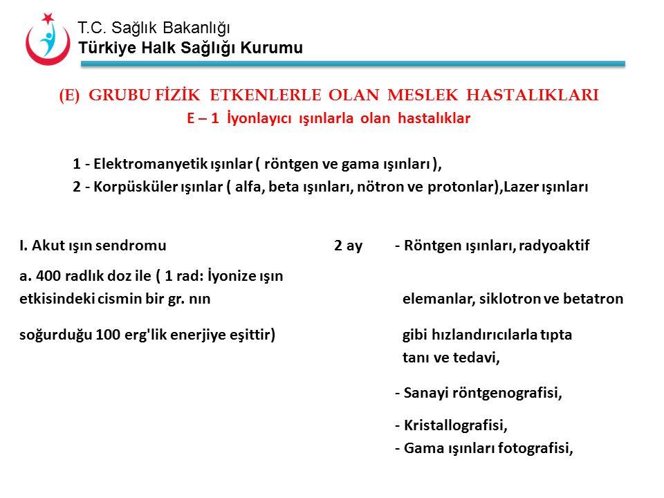T.C. Sağlık Bakanlığı Türkiye Halk Sağlığı Kurumu (E) GRUBU FİZİK ETKENLERLE OLAN MESLEK HASTALIKLARI E – 1 İyonlayıcı ışınlarla olan hastalıklar 1 -