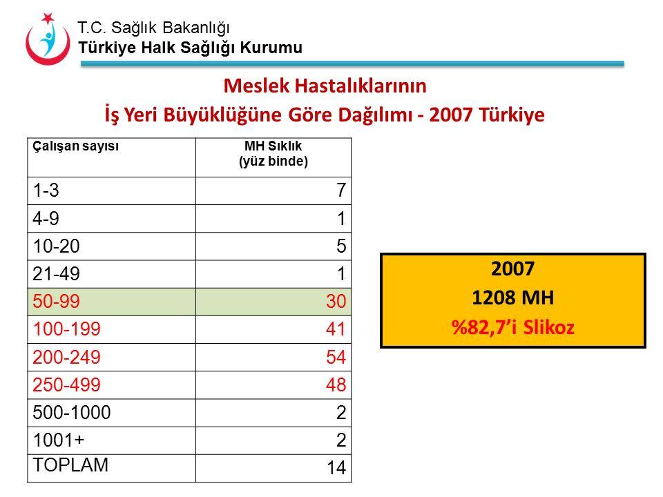 T.C. Sağlık Bakanlığı Türkiye Halk Sağlığı Kurumu Meslek Hastalıklarının İş Yeri Büyüklüğüne Göre Dağılımı - 2007 Türkiye Çalışan sayısıMH Sıklık (yüz