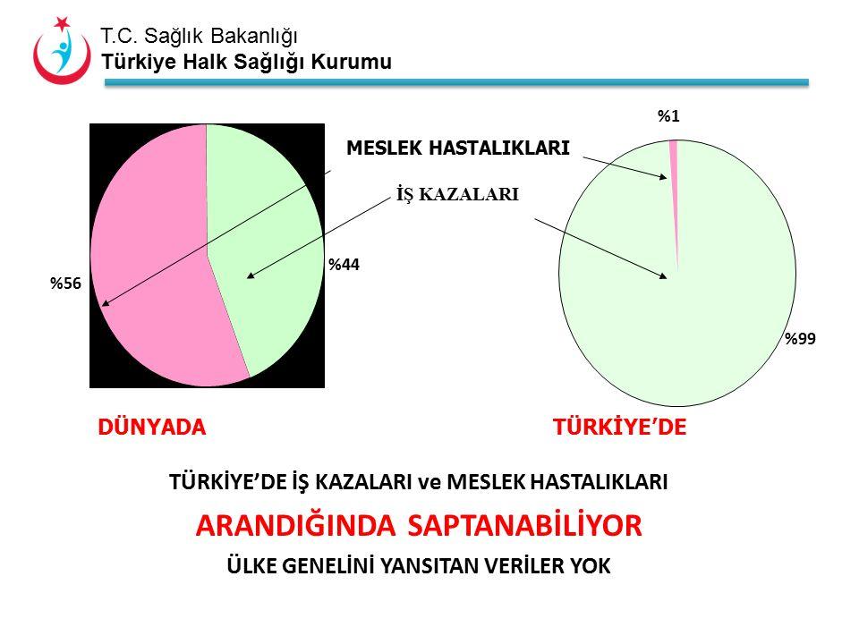 T.C. Sağlık Bakanlığı Türkiye Halk Sağlığı Kurumu %99 %1 %44 %56 MESLEK HASTALIKLARI İŞ KAZALARI DÜNYADA TÜRKİYE'DE TÜRKİYE'DE İŞ KAZALARI ve MESLEK H