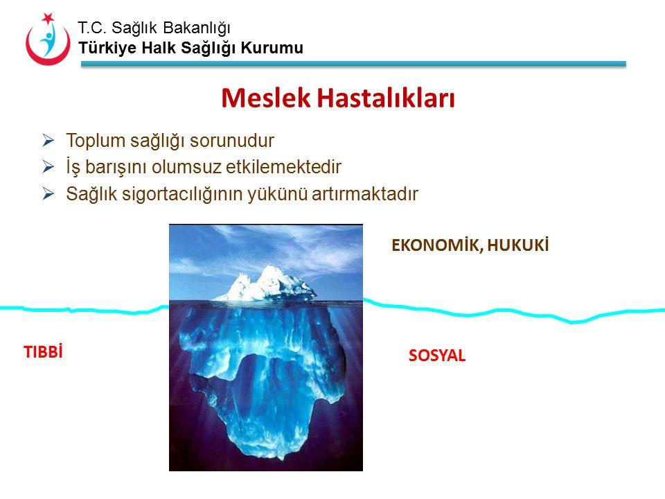 T.C. Sağlık Bakanlığı Türkiye Halk Sağlığı Kurumu Meslek Hastalıkları  Toplum sağlığı sorunudur  İş barışını olumsuz etkilemektedir  Sağlık sigorta