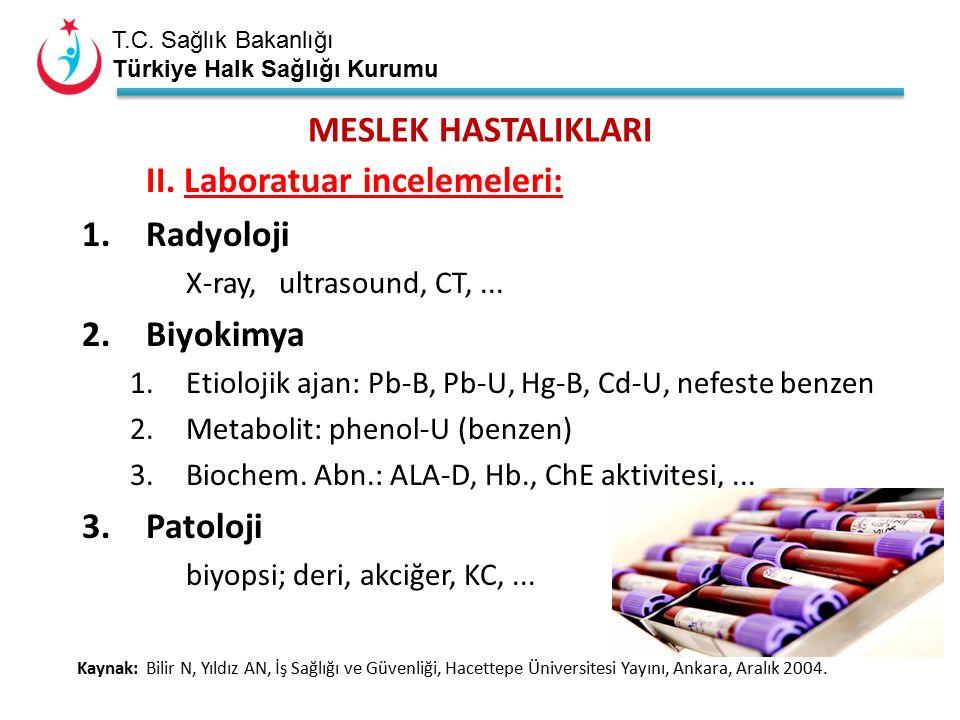 T.C. Sağlık Bakanlığı Türkiye Halk Sağlığı Kurumu MESLEK HASTALIKLARI II.