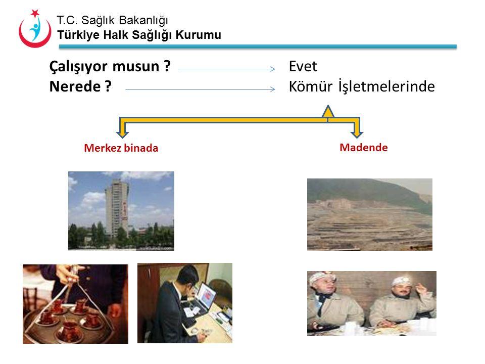 T.C. Sağlık Bakanlığı Türkiye Halk Sağlığı Kurumu Çalışıyor musun .