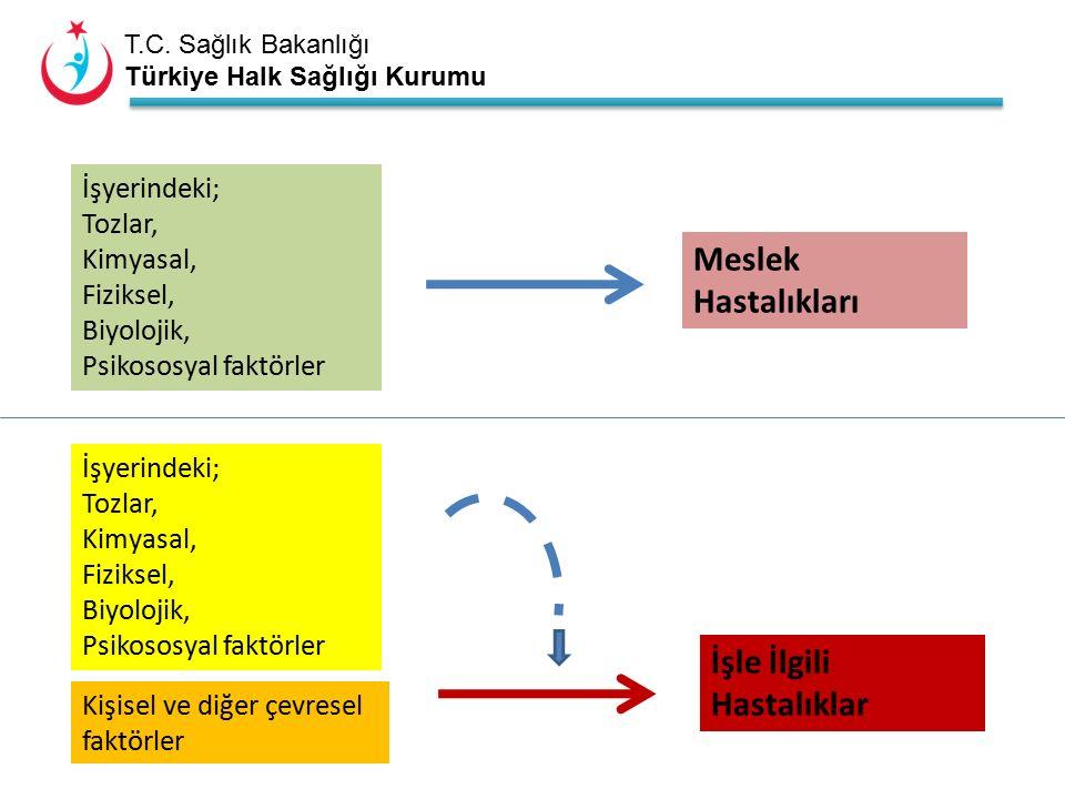 T.C. Sağlık Bakanlığı Türkiye Halk Sağlığı Kurumu İşyerindeki; Tozlar, Kimyasal, Fiziksel, Biyolojik, Psikososyal faktörler Meslek Hastalıkları İşyeri