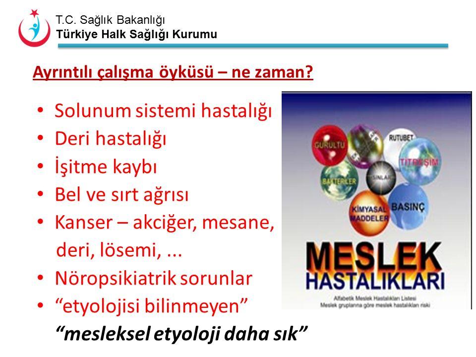 T.C. Sağlık Bakanlığı Türkiye Halk Sağlığı Kurumu Ayrıntılı çalışma öyküsü – ne zaman.