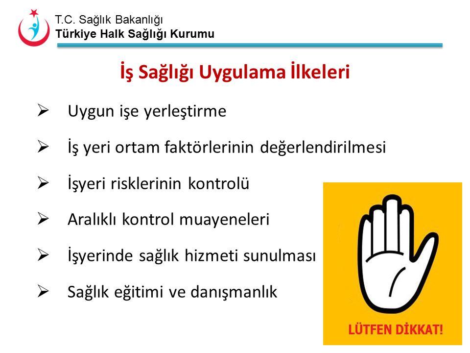 T.C. Sağlık Bakanlığı Türkiye Halk Sağlığı Kurumu İş Sağlığı Uygulama İlkeleri  Uygun işe yerleştirme  İş yeri ortam faktörlerinin değerlendirilmesi