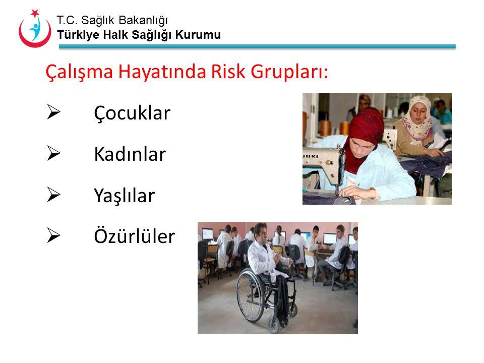 T.C. Sağlık Bakanlığı Türkiye Halk Sağlığı Kurumu Çalışma Hayatında Risk Grupları:  Çocuklar  Kadınlar  Yaşlılar  Özürlüler