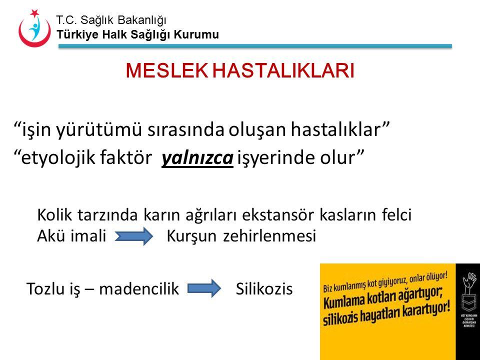 """T.C. Sağlık Bakanlığı Türkiye Halk Sağlığı Kurumu MESLEK HASTALIKLARI """"işin yürütümü sırasında oluşan hastalıklar"""" """"etyolojik faktör yalnızca işyerind"""