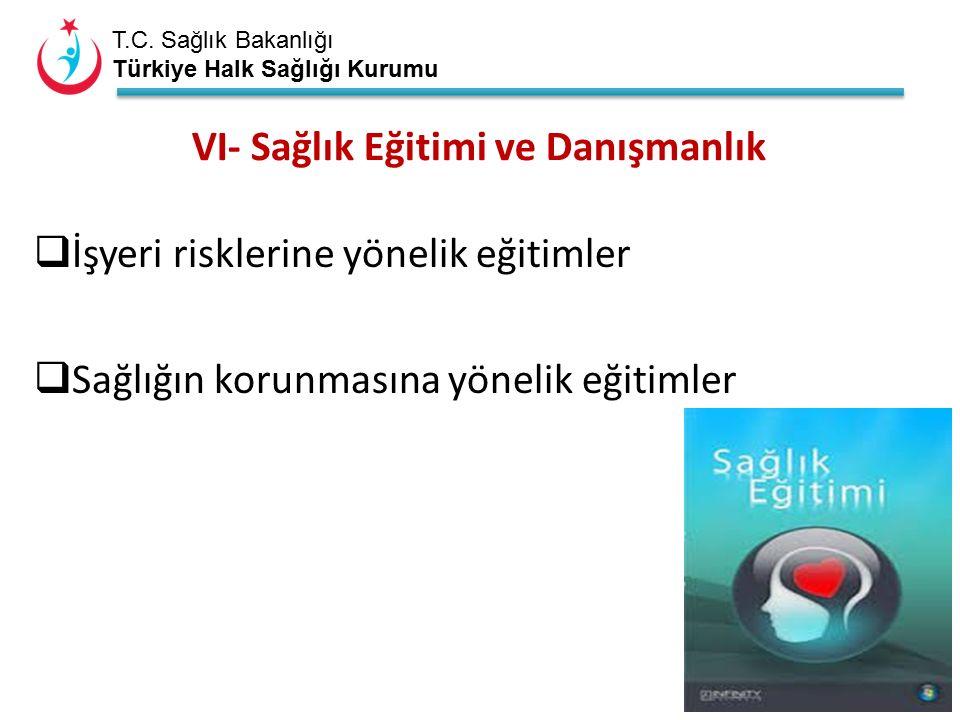 T.C. Sağlık Bakanlığı Türkiye Halk Sağlığı Kurumu VI- Sağlık Eğitimi ve Danışmanlık  İşyeri risklerine yönelik eğitimler  Sağlığın korunmasına yönel